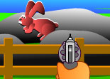 Chasse Lapin