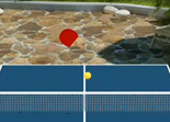 Virtual Table Tennis 3 HD iPad