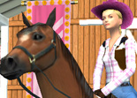 Cheval Concours Complet 3 Unity 3D