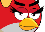 Construction Angry Birds