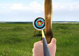 Archery Tournament iPad
