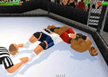 Wrestling Revolution 3D Android