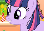 Twilight Sparkle Permisson